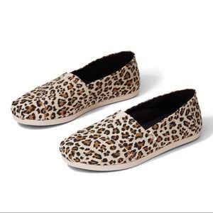Brand New Toms Birch Leopard Print Women Slip Ons